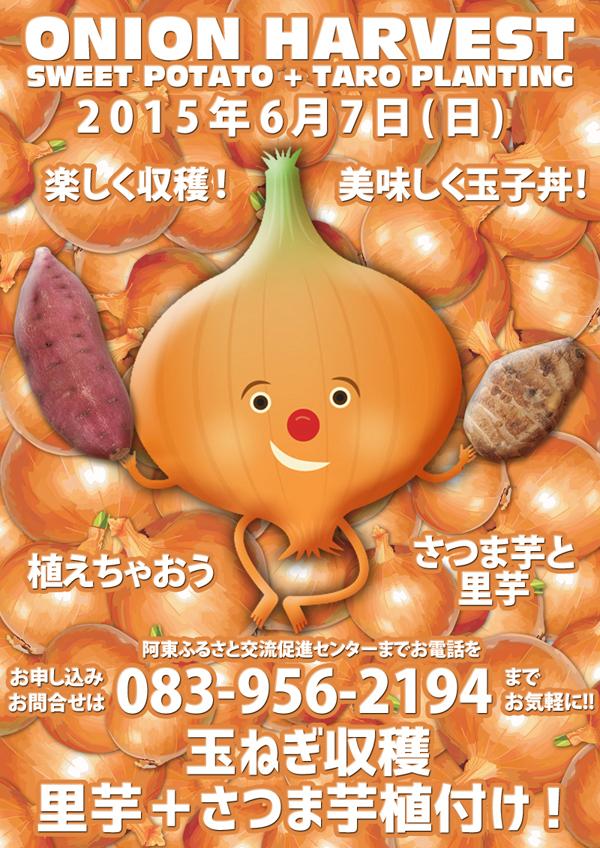 20150528たまねぎ収穫チラシブログ用
