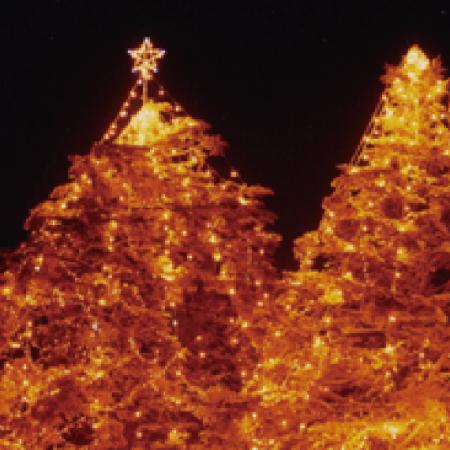 クリスマスナイトフェスティバル